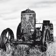 Bulldog & Motorrad Oldtimer-Treffen